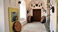 Expozice v interiéru zámku