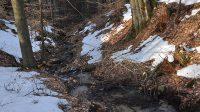 25.2.2019 - Potok nad vodopádem
