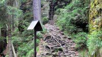 27. 7. 2014 - Výstup na vyhlídku z Kyjovského údolí