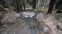 12. 3. 2018 - bezejmenný potok nad údolím Bukových skal