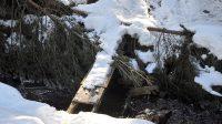 25.2.2019 - Mostek přes potok