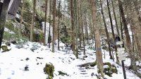 Odbočka od Sýrového potoka na Kyjovský hrádek