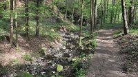 Údolím Ludvíkovického potoka