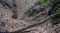 Koryto Kamenného potoka