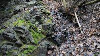 Malý skalní práh pod křížením potoka s cestou - detail
