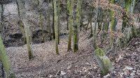 Pohled do rokle Pekelského potoka ze silnice pod Mlýništěm