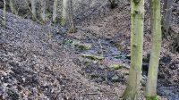 Přechod potoka na opačný břeh