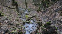 Pohled na přístupovou cestu podél koryta od vodopádu