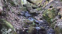 Hartmanův vodopád - koryto nad vodopádem