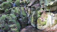 Jedna z kaskád, na webu vodopádů č. 4, 5