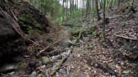 Koryto západního přítoku pod vodopády