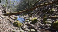 26. 4. 2021 - nad roklí s horním stupněm Vaňovského vodopádu