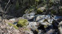 26. 4. 2021 - hrana horního stupně Vaňovského vodopádu