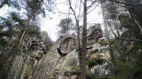 Jižní svah Kohoutího vrchu 2. 1. 2021