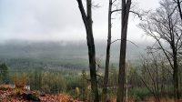 Výhledy na lesy v okolí z cesty na vrchol 5. 1. 2021