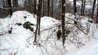 10. 2. 2021 - Skalky na Borském vrchu